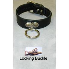 Premium 1 Ring Collar